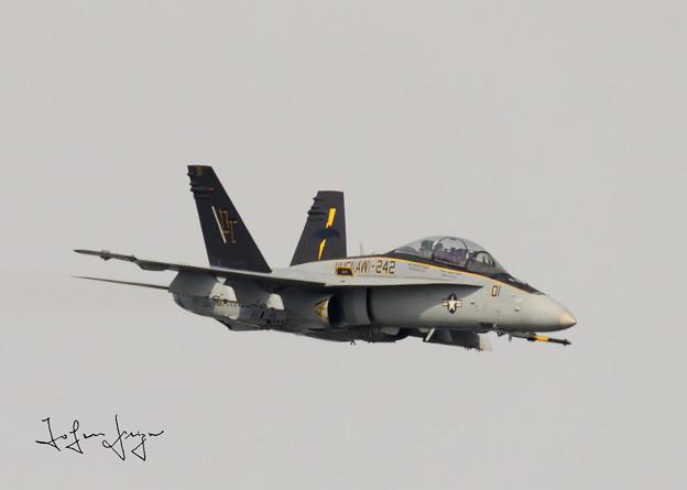 写真: FA-18D正面右