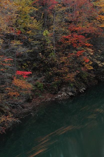 淵の色・紅葉の色