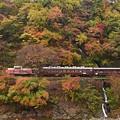 Photos: 紅葉の渓谷