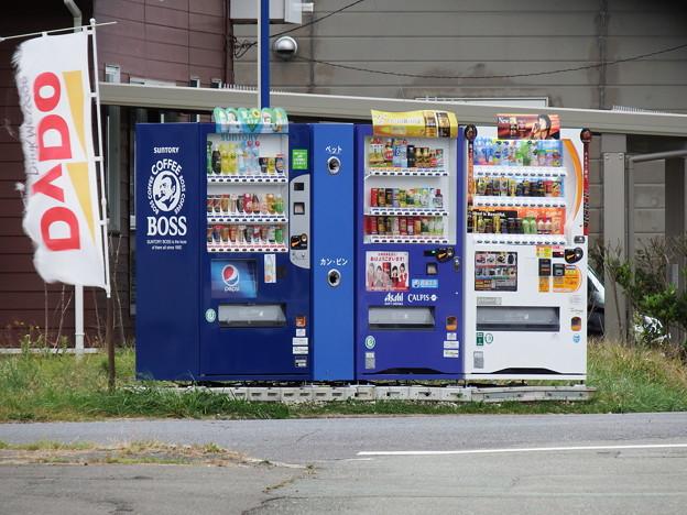 DyDo幟と自販機