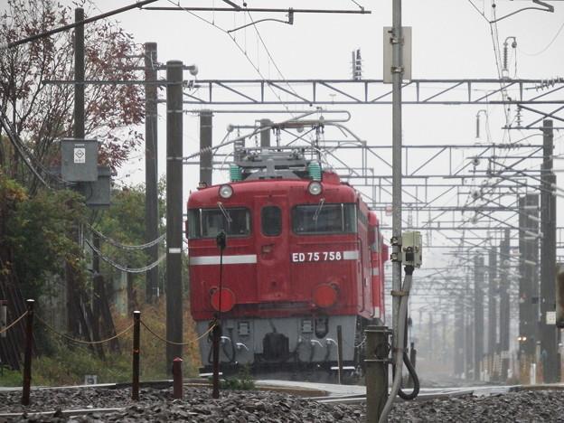 EF81‐95牽引~ED75‐758配給 vol.5