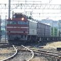 Photos: EF81‐719牽引 1657レ