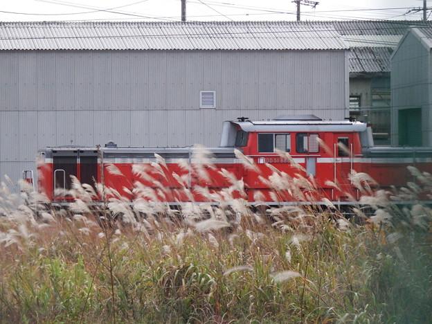 芒とDD51-888