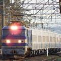 Photos: EF510‐506牽引JR北海道キハ261系甲種輸送 vol.1