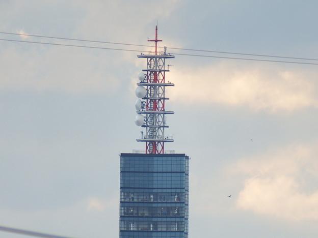 3キロ圏内からのポートタワーセリオン