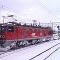 Photos: SN3R1990