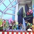 Photos: 毎年恒例~イオン土崎港店の置き山