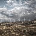 写真: 風の谷の・・・
