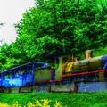 Photos: GreenForest ~Train~