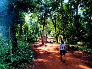 【 Hotel La Cantera 】敷地内のジャングル体験3