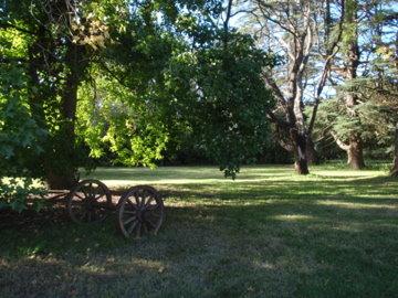 牧場の朝3