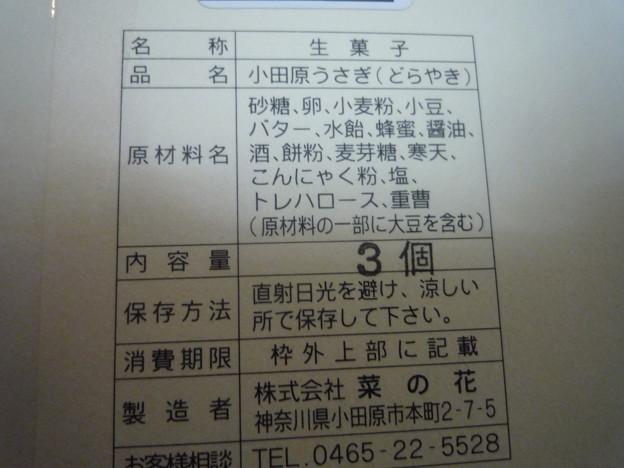 小田原うさぎ2