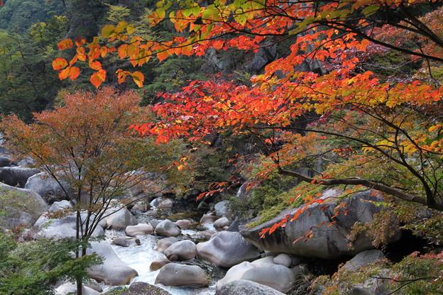 秋の昇仙峡3