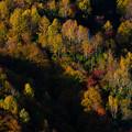 奥利根の秋