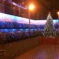 Photos: 南千住・地下連絡通路のイルミネーション(2009/12)