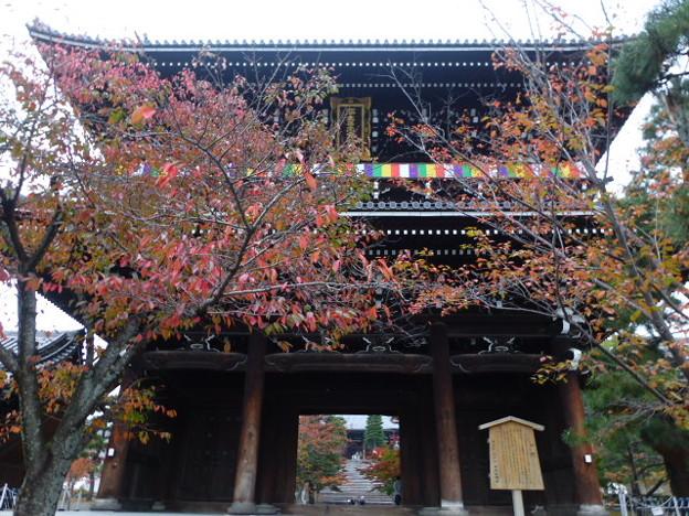 Photos: 金戒光明寺 山門