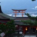 Photos: 厳島神社 満潮時