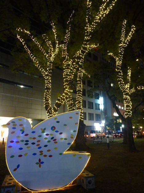 Photos: 平和の鳩