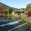 Photos: 嵐山を散策