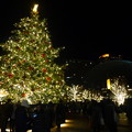 高さ約10mのクリスマスツリー@恵比寿ガーデンプレイス