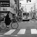 写真: 帰り道