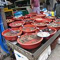 Photos: 温陽の市場風景