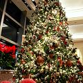 Photos: せりか みぃ~けた! Romantic Yokohama ・・・ Night of December XV