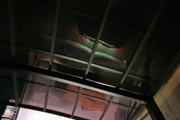 カーポートの屋根に映ったロードスター