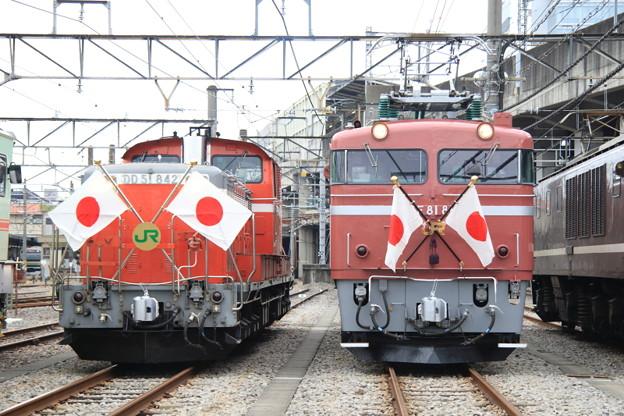 DD51-842&EF81-81