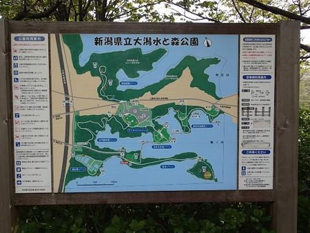 新潟 大潟水と森公園