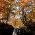 Photos: 秋景色を求めて・・・。?