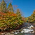 秋景色を求めて・・・。?