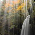 水のカーテン越しの紅葉♪
