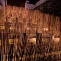 うすき竹宵♪?