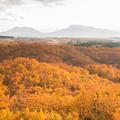 恋人たちの丘から秋景色♪