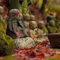 写真: 雨の呑山観音寺♪?