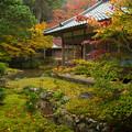 写真: 雷山千如寺の紅葉♪