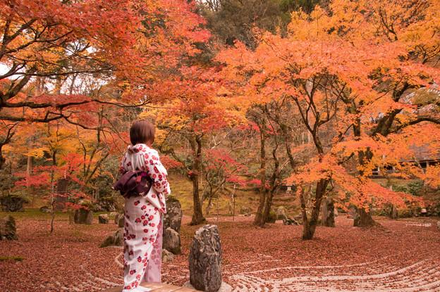 太宰府光明禅寺の紅葉♪