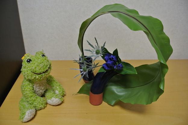 Photos: くるりんと