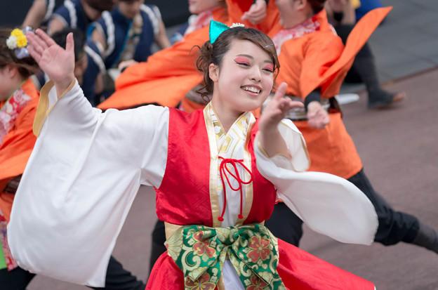 京都さくらよさこい2016 京炎 そでふれ!輪舞曲