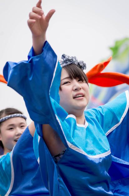 どまつり夜桜 in 岡崎2016 祭舞WaiWai