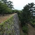 写真: 松阪城跡