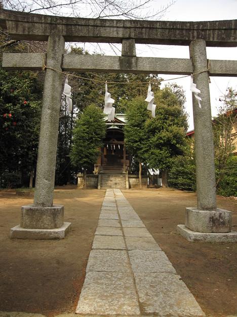 金比羅神社?