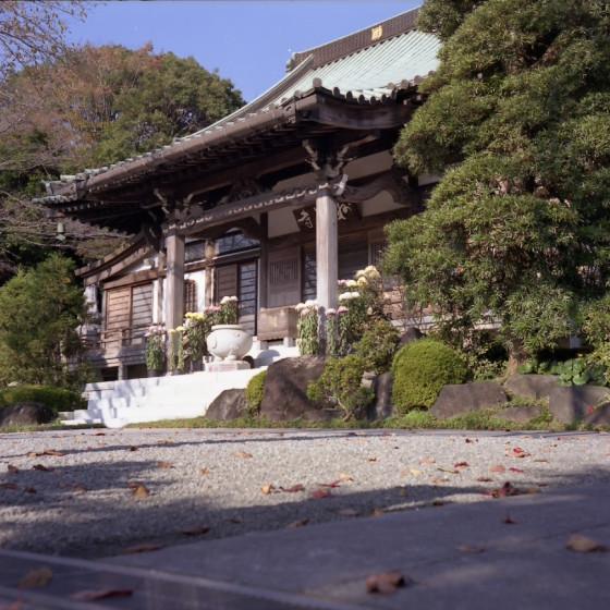 写真: 秋の妙法寺 二眼編