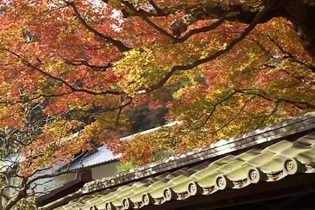 東慶寺の紅葉 02