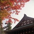 写真: 円覚寺の紅葉 二眼編 01