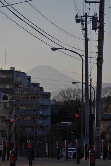 写真: 境木から見る富士山
