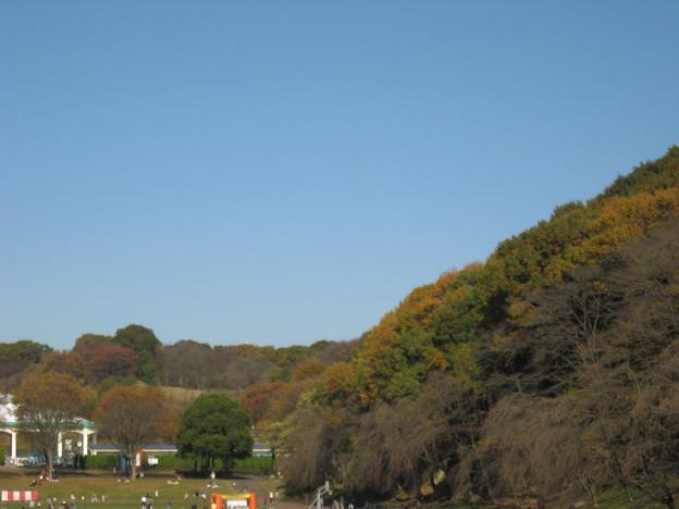 写真: 秋晴れ