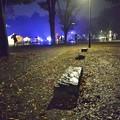 Photos: [4]「雨に濡れた石のベンチ」