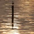 写真: [20]「夕暮れ時の池面」
